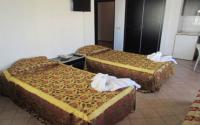 Gold Twins Suit Hotel Standart Oda
